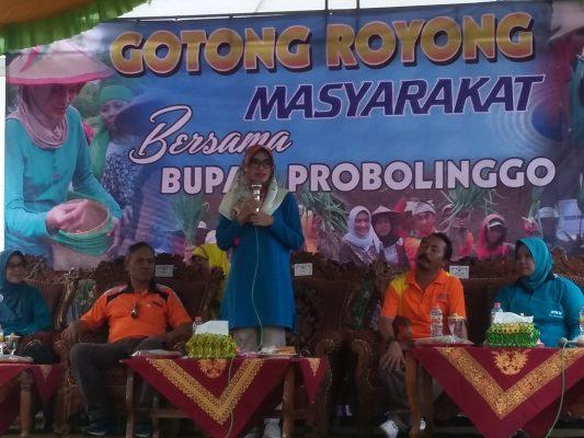Gotong Royong Bersama Bupati Probolinggo di Desa Sidomulyo kotaanyar