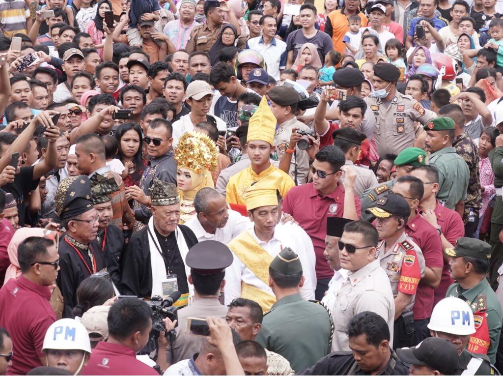 Setelah Sumsel dan Sumut, Presiden Luncurkan Peremajaan Sawit Rakyat di Riau