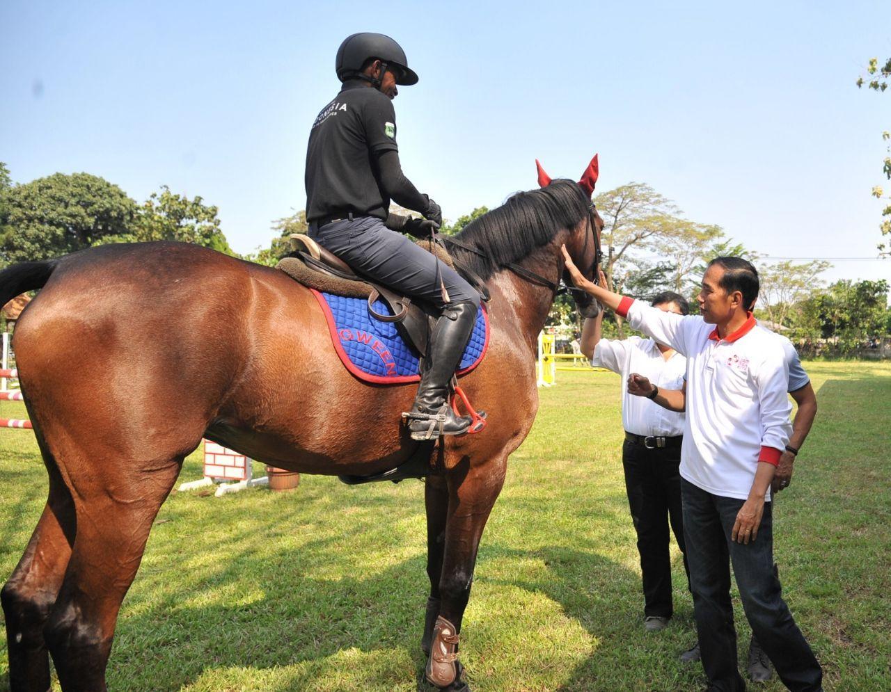 Asian Games 2018 Beri Semangat, Presiden Jokowi Kunjungi Atlet Pelatnas Berkuda*