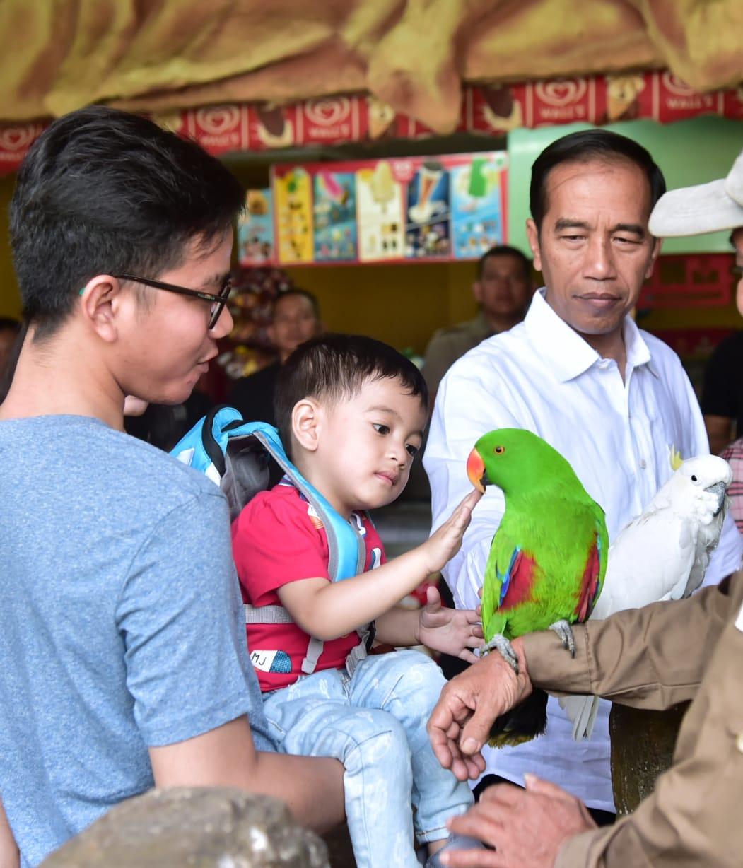 Ajak Cucu ke TMII, Presiden Kenalkan Berbagai Spesies Burung