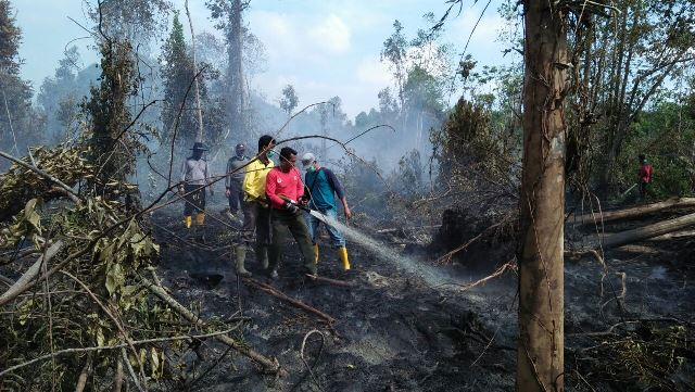 Marwan: Manusia Faktor Utama Penyebab Kebakaran Hutan dan La