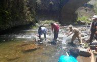 1.000 Ekor Benih Ikan Sidat Ditebar di Sungai Serayu