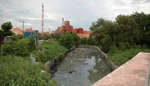 Pemerintah Daerah Perlu Meningkatkan Pengawasan Limbah Industri