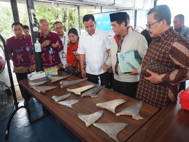 Roem Kono: Tumpang Tindih, DPR Segera Revisi UU Wilayah Akuatik dan Terestrial