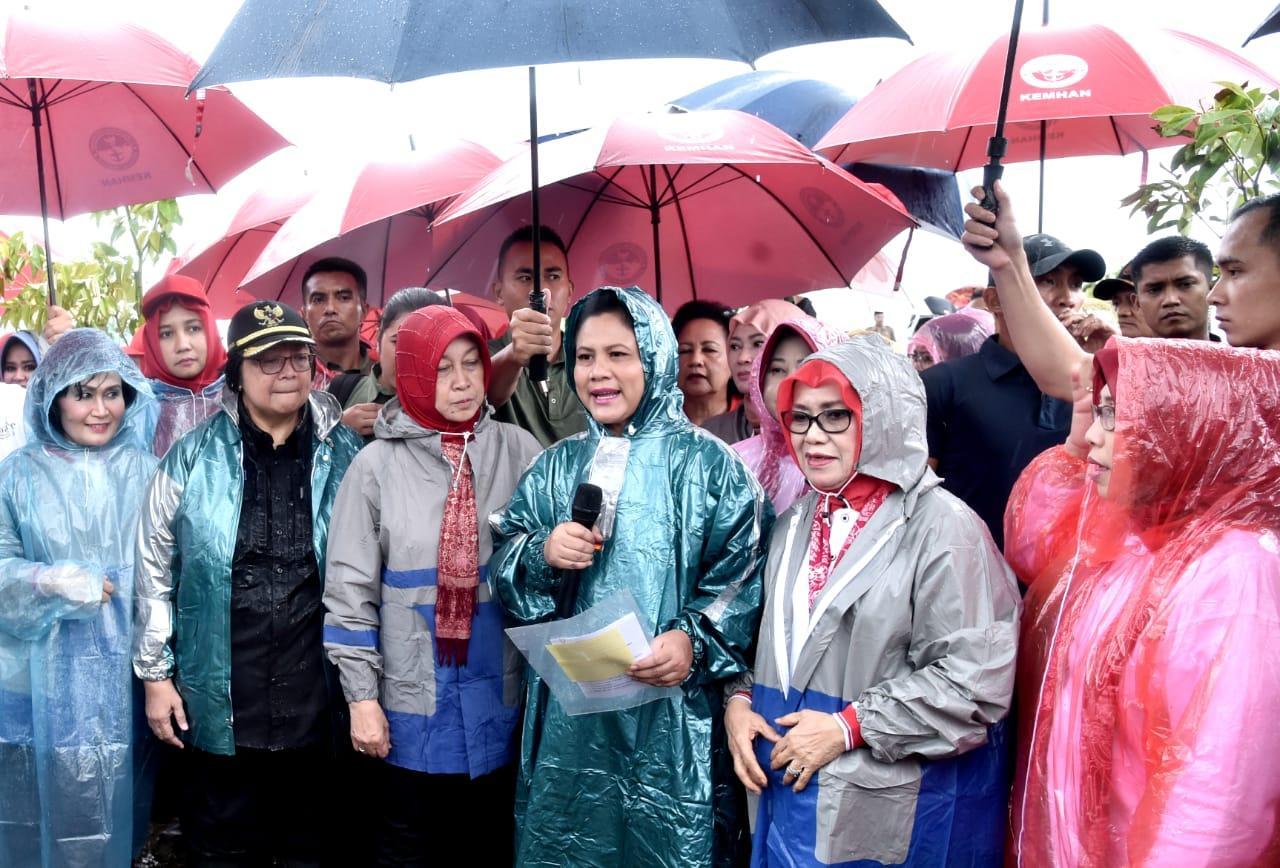 Hujan Tidak Menghalangi Ibu Negara Tanam Mangrove di Pandeglang