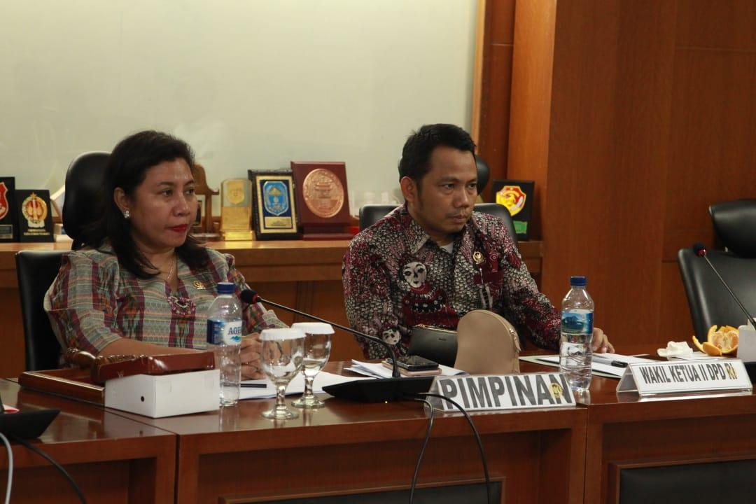 DPD RI Dorong Peningkatan Kualitas Dokter dan Tenaga Kesehatan
