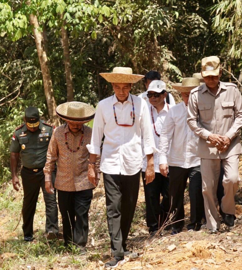Kunjungi 'Kawasan Segitiga Emas' Kalteng, Presiden Tinjau Lokasi Calon Ibu Kota