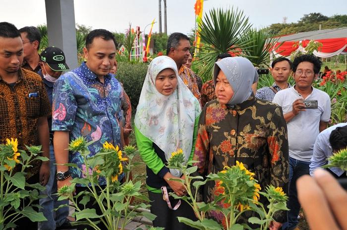 Kado Istimewa HJKS-726, Wali Kota Risma Resmikan 70 Taman Baru