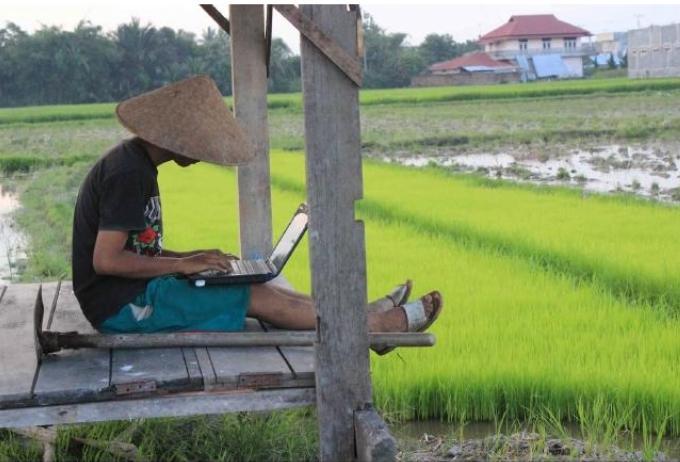 Sukses Bisnis Online di Desa