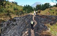 Kebakaran Hutan Lindung di Gunung Pakuwojo Berhasil Dijinakan