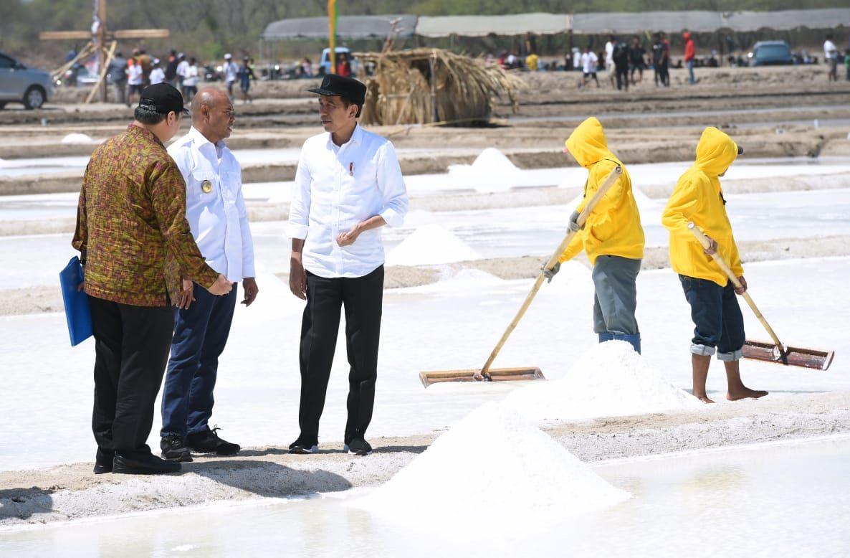 Presiden Jokowi Tinjau Produksi Tambak Garam di Kupang Timur