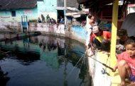 Mancing Mania Merdeka, Ratusan Ikan Lele Dilepaskan
