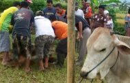 Pemkab Wonosobo Imbau Masyarakat Pakai Bahan Ramah Lingkungan pada Peringatan Hari Raya Kurban dan HUT RI