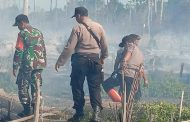Empat Hektar Lahan Sawit Di Kampung Teluk Semanting Terbakar