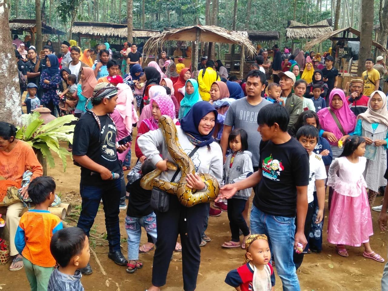 Sosialisasi Cara Penanganan Ular Rangkaian Anniversary Ke-7 Kopes