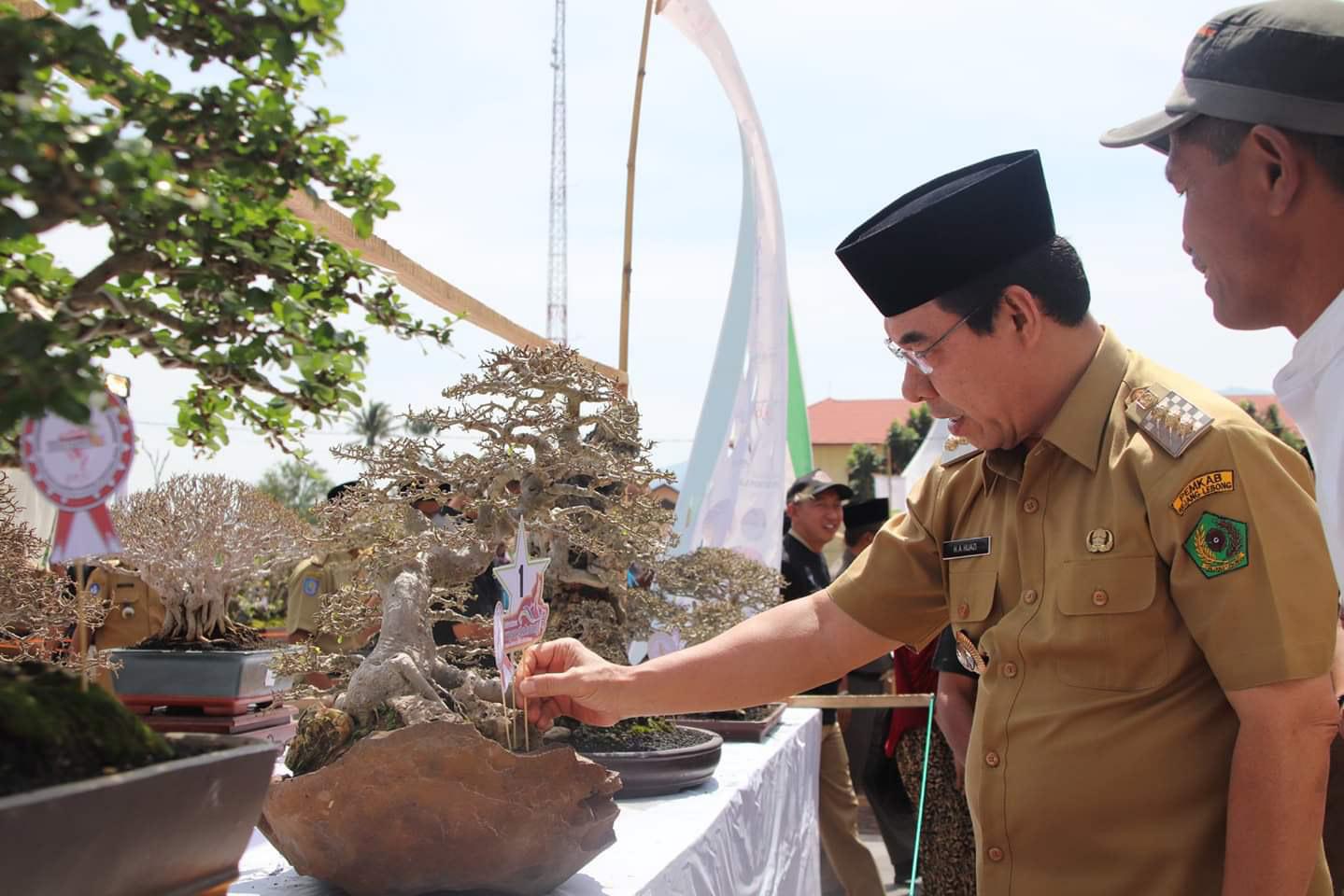 Lomba Bonsai dan Ukir Resmi Dibuka Oleh Bupati Hijazi