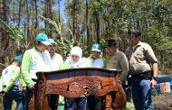 Khofifah Gagas Triangle KEK Singosari-BBIB-UB Forest untuk Wisata Penangkaran Cenderawasih dan Kakatua di Jatim