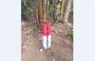Hektaran Lahan Perhutani KPH Banyuwangi Selatan Diserobot KTH Tanpa SK