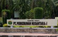 Tiga Elemen Sipil Minta Menteri BUMN Segera Copot Dirut dan Dewan Komisaris PTPN 1 Aceh