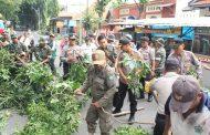Rawan Tumbang, Polresta Sidoarjo dan Instansi Terkait Rapikan Pohon